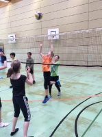 Volleyball Turnier 2018_4